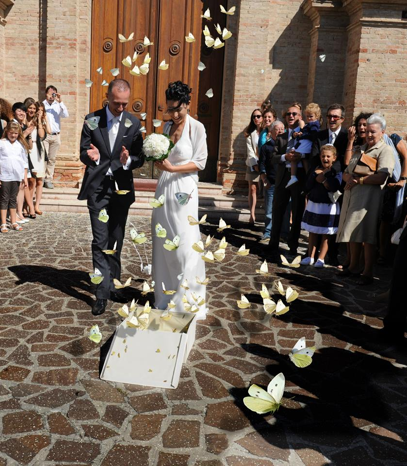 farfalle per matrimonio