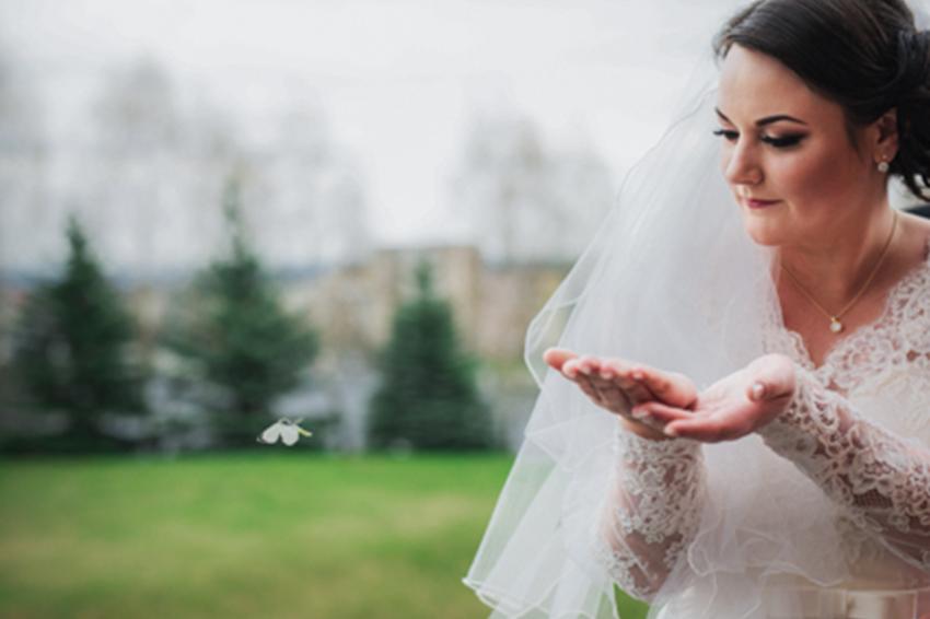 farfalle-matrimonio