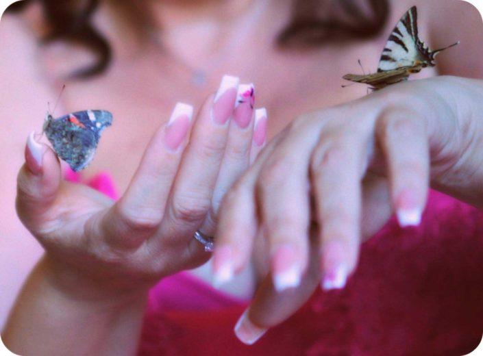 volo farfalle