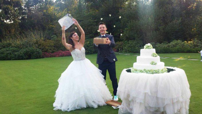 farfalle vive matrimonio